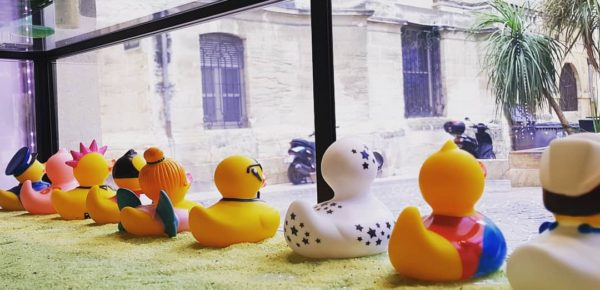 vitrine garden party canard